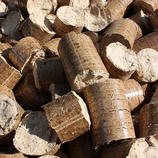 Beneficios del uso de calderas de biomasa